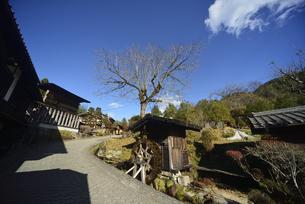 中山道 妻籠宿の写真素材 [FYI04740993]