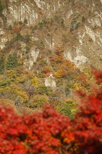 妙義山の紅葉の写真素材 [FYI04741212]