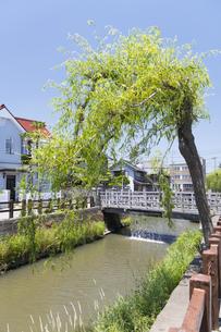 小江戸さわら 小野川とジャージャー橋の写真素材 [FYI04741352]