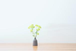 スプレーマムのあるテーブルの写真素材 [FYI04741358]