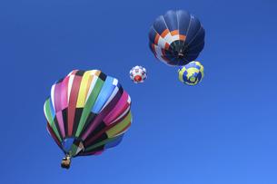 青空と飛び立つ熱気球たちの写真素材 [FYI04741388]