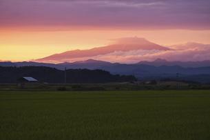 夕焼けに燃える鳥海山の写真素材 [FYI04741389]