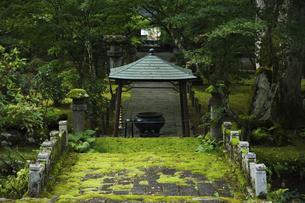 雲洞庵の美しい参道の写真素材 [FYI04741390]