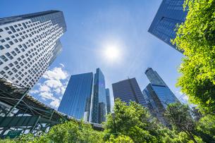ニューヨーク市 ロングアイランドシティー クイーンズボロープラザの 新緑の並木道沿い高層ビル群の間を走るニューヨーク市地下鉄。の写真素材 [FYI04741404]