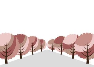 桜の並木道 イラストのイラスト素材 [FYI04741696]