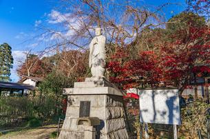 名刹を彩る紅葉の本土寺の写真素材 [FYI04741752]