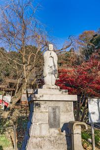 名刹を彩る紅葉の本土寺の写真素材 [FYI04741754]