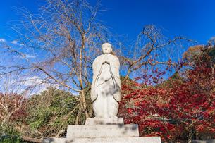 名刹を彩る紅葉の本土寺の写真素材 [FYI04741756]