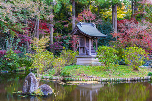 名刹を彩る紅葉の本土寺の写真素材 [FYI04741757]