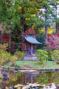 名刹を彩る紅葉の本土寺の写真素材 [FYI04741758]