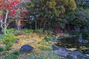名刹を彩る紅葉の本土寺の写真素材 [FYI04741759]