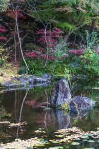 名刹を彩る紅葉の本土寺の写真素材 [FYI04741762]