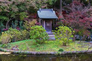 名刹を彩る紅葉の本土寺の写真素材 [FYI04741763]