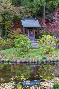 名刹を彩る紅葉の本土寺の写真素材 [FYI04741764]