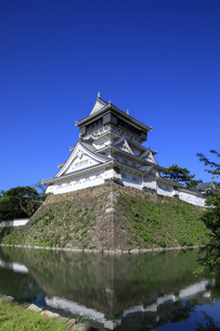 小倉城の写真素材 [FYI04741808]