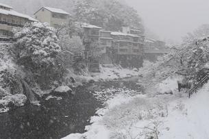 郡上八幡・吉田川の雪景色の写真素材 [FYI04741959]