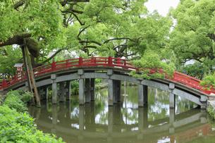 太宰府天満宮の太鼓橋の写真素材 [FYI04741995]