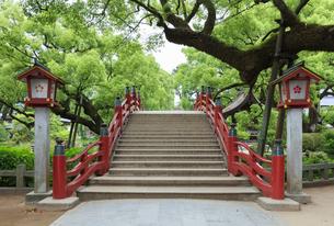 太宰府天満宮の太鼓橋の写真素材 [FYI04741999]