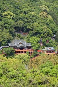 祐徳稲荷神社の写真素材 [FYI04742011]