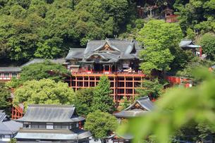 祐徳稲荷神社の写真素材 [FYI04742014]