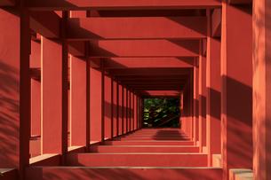 祐徳稲荷神社の柱の写真素材 [FYI04742016]