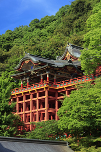新緑の祐徳稲荷神社の写真素材 [FYI04742018]