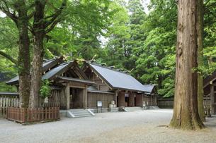 天岩戸神社の写真素材 [FYI04742064]