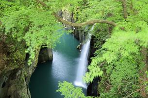高千穂峡の真名井の滝の写真素材 [FYI04742068]