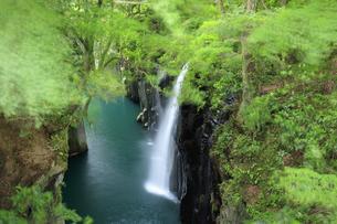 高千穂峡の真名井の滝の写真素材 [FYI04742071]