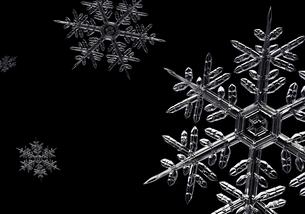 雪の結晶のイラスト素材 [FYI04742162]