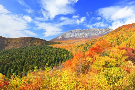 秋の鍵掛峠より大山と紅葉の写真素材 [FYI04742163]