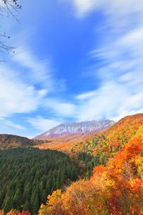 秋の鍵掛峠より大山と紅葉の写真素材 [FYI04742164]