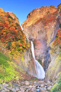 秋の立山 称名滝と紅葉の写真素材 [FYI04742165]