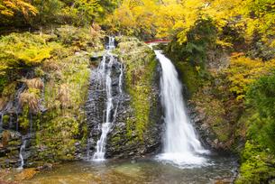 秋の銀山温泉 白銀の滝の写真素材 [FYI04742258]