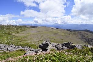 夏の白雲岳火口(北海道・大雪山)の写真素材 [FYI04742327]