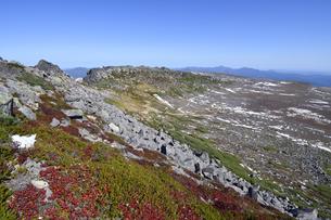 秋の白雲岳火口(北海道・大雪山)の写真素材 [FYI04742355]