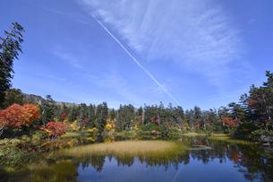 秋の大雪高原沼(北海道・大雪山)の写真素材 [FYI04742389]
