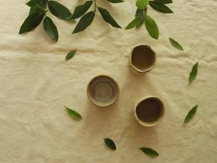 ローリエのお茶の写真素材 [FYI04742458]