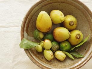 秋の果物(いちじく、ナツメ、すだち)の写真素材 [FYI04742481]