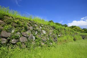 日野江城跡の写真素材 [FYI04742580]
