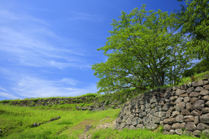 日野江城跡の写真素材 [FYI04742583]