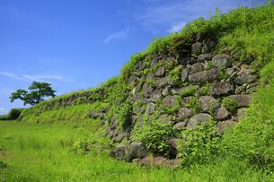 日野江城跡の写真素材 [FYI04742584]