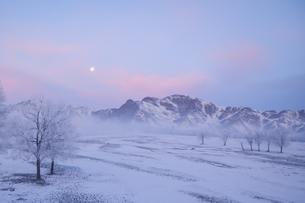 凍る月 凍る朝のうちの写真素材 [FYI04742811]