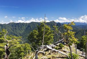 大峯奥掛道 弥山付近より大普賢岳・山上ヶ岳方面の写真素材 [FYI04742836]
