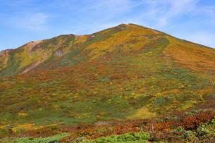 栗駒山(須川岳)の紅葉の写真素材 [FYI04742848]