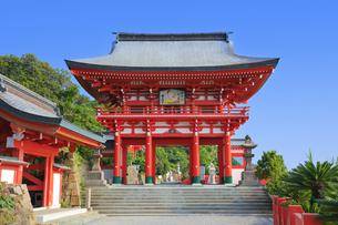 鵜戸神宮 楼門の写真素材 [FYI04743034]