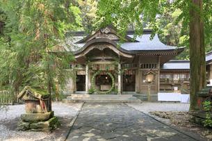 高千穂神社の写真素材 [FYI04743043]