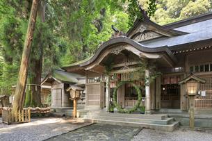 高千穂神社の写真素材 [FYI04743047]