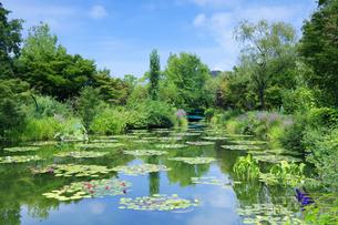 高知県のモネの庭マルモッタン 水の庭の写真素材 [FYI04743061]