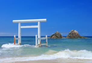 桜井二見ヶ浦の鳥居と夫婦岩の写真素材 [FYI04743114]